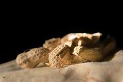 Cáscaras del cacahuete en la opinión del primer Imágenes de archivo libres de regalías