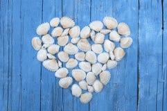 Cáscaras del mar blanco que forman un corazón foto de archivo