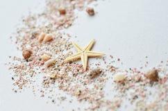 Cáscaras del mar y arena rosada con una estrella de mar en un fondo blanco Fotografía de archivo libre de regalías