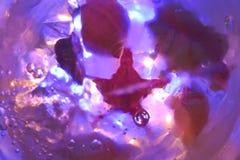 Cáscaras en el agua Fotos de archivo libres de regalías