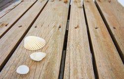 Cáscaras en la madera Foto de archivo libre de regalías