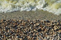 Cáscaras en la playa y la resaca fotografía de archivo