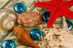 Cáscaras estrellas de mar y descensos del agua en el dinero Imagen de archivo libre de regalías