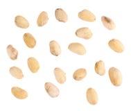 Cáscaras múltiples del pistacho aisladas Fotografía de archivo libre de regalías