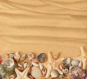 Cáscaras y arena del mar Foto de archivo libre de regalías