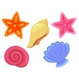 Cáscaras y estrellas de mar coloridas del mar stock de ilustración