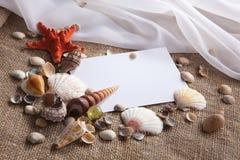 Cáscaras y estrellas de mar con el Libro Blanco Fotografía de archivo libre de regalías