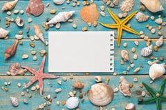 Cáscaras y estrellas de mar en fondo de madera azul Copie el espacio para Imagen de archivo libre de regalías