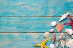 Cáscaras y estrellas de mar en fondo de madera azul Copie el espacio para Imagenes de archivo