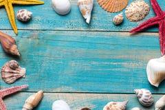 Cáscaras y estrellas de mar en fondo de madera azul Copie el espacio para Imagen de archivo