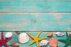 Cáscaras y estrellas de mar en fondo de madera azul Copie el espacio para Imágenes de archivo libres de regalías