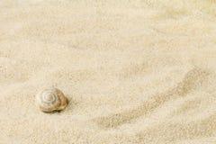 Cáscaras y piedras en la arena con un lugar libre fotos de archivo