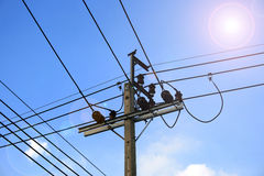 Câble électrique sur le poteau concret Photographie stock