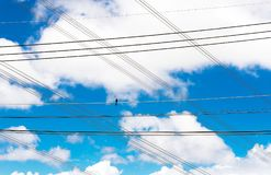 Câble avec le ciel bleu et nuageux Images stock