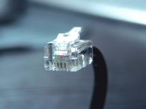 Câble avec le connecteur RJ-45 Images stock