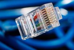 Câble bleu de connexion réseau de LAN sur le fond noir Photos stock