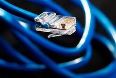 Câble bleu de connexion réseau de LAN sur le fond noir Photo stock