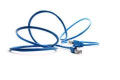 Câble bleu de réseau Photographie stock libre de droits