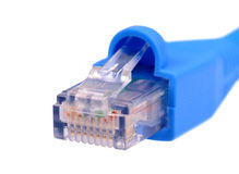 Câble bleu de réseau de l'utp cat6 d'isolement sur le fond blanc image libre de droits