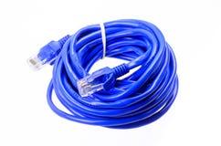 Câble bleu de réseau sur le fond blanc Photographie stock