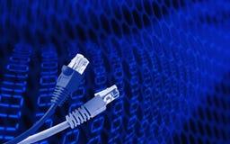 Câble coloré de réseau avec les connecteurs RJ45, câble bleu de réseau Photos libres de droits