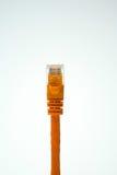 Câble d'Ethernet Image libre de droits