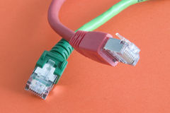 Câble d'Ethernet Image stock
