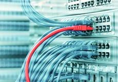 câble d'Ethernet sur des commutateurs de réseau photos stock