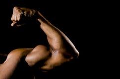 Câble de biceps Photo libre de droits