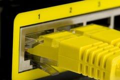 Câble de fiche de modem Photographie stock libre de droits
