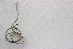 Câble de l'électricité et mur blanc photos stock