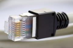 Câble de réseau Photographie stock libre de droits