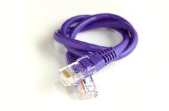 Câble de réseau Images libres de droits
