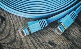Câble de réseau avec les connecteurs RJ45 Photo libre de droits
