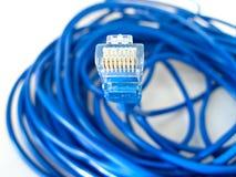 Câble de réseau d'UTP Photos stock