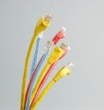 Câble de réseau du chat 5 Photo libre de droits