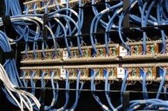 Câble de réseau du chat 5 et pivot d'Ethernet Photos stock