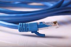 Câble de réseau informatique photos libres de droits