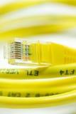 Câble de réseau informatique Photographie stock libre de droits