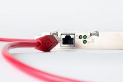 Câble de réseau sur le fond blanc images stock