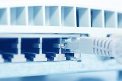 Câble du réseau RJ-45 Images stock