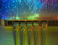 Câble et pivot de réseau Photo libre de droits