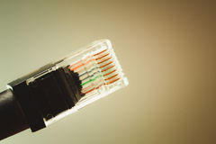 Câble Ethernet Photo libre de droits