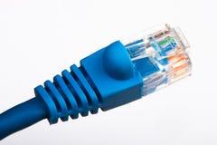 Câble Ethernet bleu image libre de droits