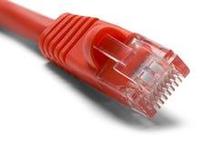 Câble Ethernet rouge Photos stock