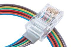 Câble multi de réseau de couleur Image libre de droits