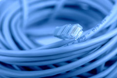 Câble net RJ45 Photographie stock libre de droits