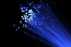 Câble optique bleu de fibre Images libres de droits