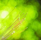 Câble optique de réseau de fibre Images stock