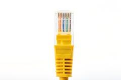Câble RJ45 de télécommunication Photos libres de droits